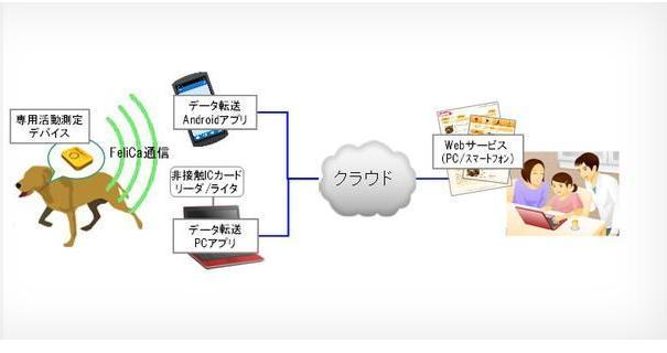 News | Collare per cani con Android da Fujitsu!