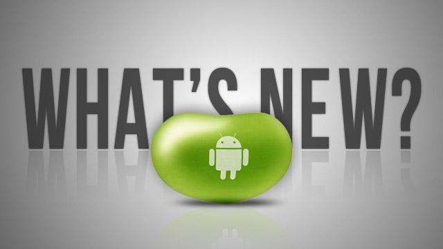 News | Con Android Jelly Bean migliorerà anche la fotocamera