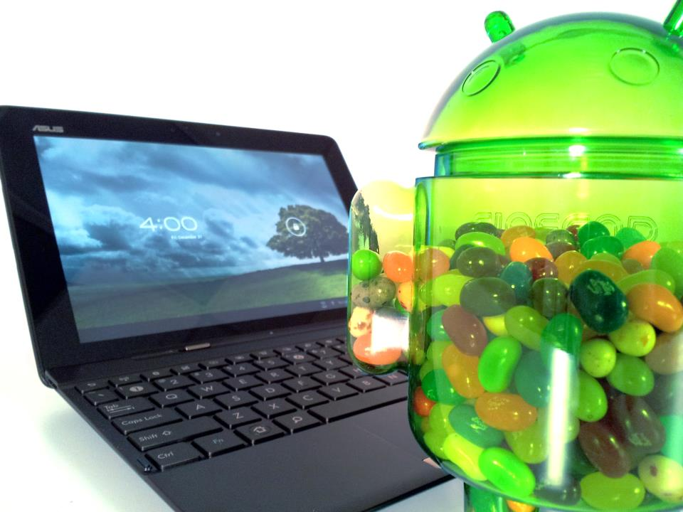 News Terminali | Asus aggiorna Transformer Pad TF300 ad Android Jelly Bean